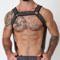CellBlock 13 Rogue Harness